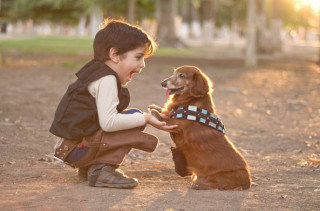 Little Han Solo & Chewbacca Pup