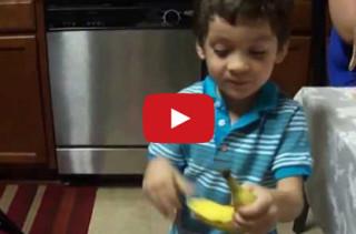 Kid Goes Batshit Over A Banana