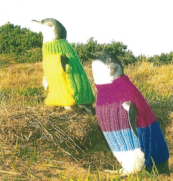 penguin-sweaters-4