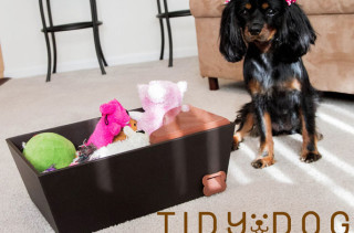 Treat Dispensing Bin Teaches Your Dog To Tidy Up