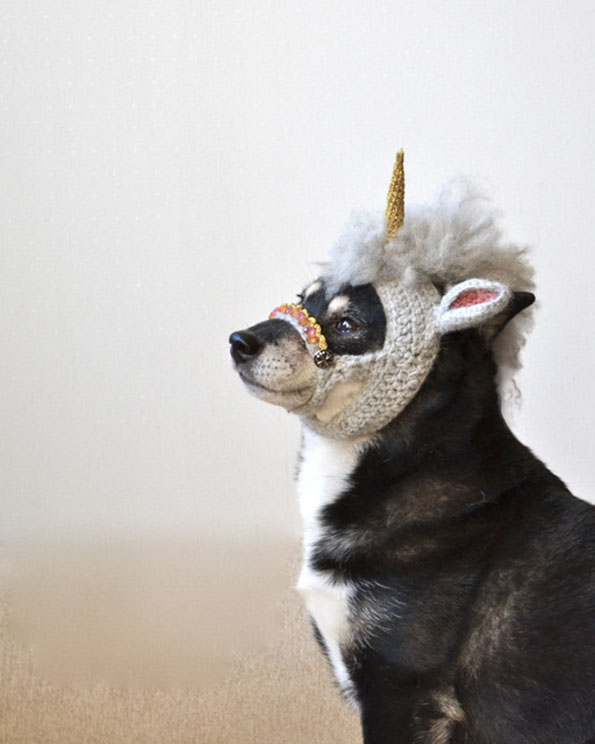 unicorn-mask-for-dogs-4