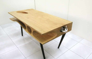 A Desk Made For (People) Work And (Cat) Play