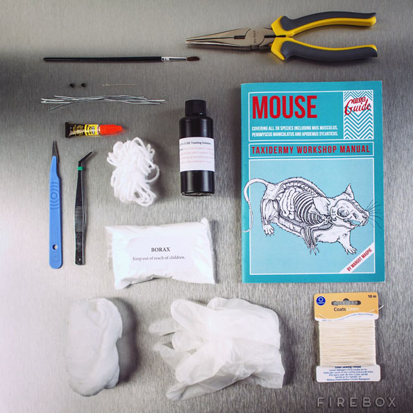 The Mouse Taxidermy Kit Gives Me The Sads :(