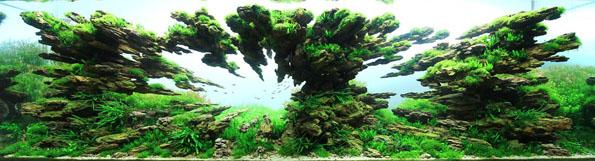 underwater-landscaping-aquarium-aquascaping-9