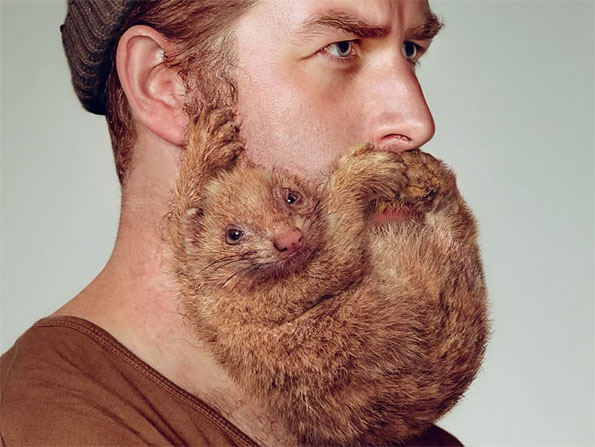 these dudes 39 beards get shaped up to look like animals incredible things. Black Bedroom Furniture Sets. Home Design Ideas