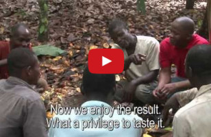 Cocoa Farmers Taste Chocolate For The First Time Ever