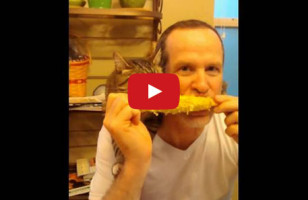 Cat & Human Eating Corn On The Cob Is An Absolute Delight