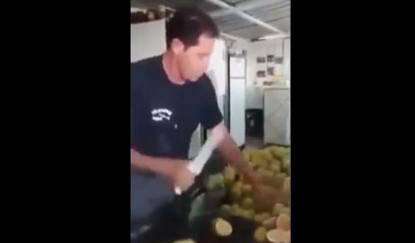 real-life-fruit-ninja