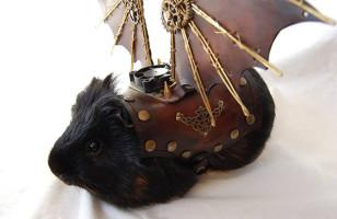 Badass Guinea Pig Steampunk Cosplay