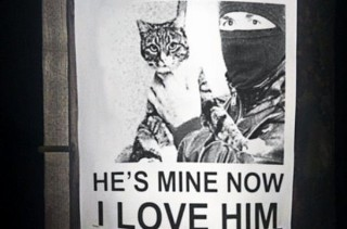 He's My Cat Now & More Incredible Links