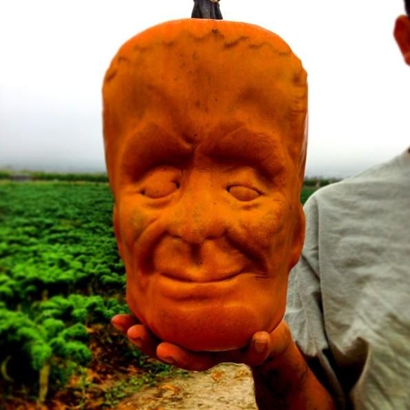 frankenstein-pumpkin-frankenpumpkin-1