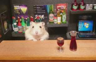 These Hamster Bartenders Are Too Cute, I Need A Drink