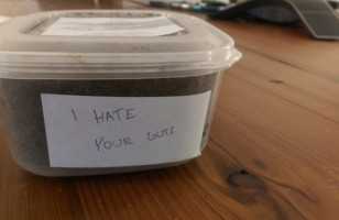 Sh*t Express Anonymously Delivers Poop Via Mail