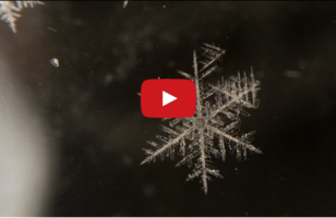 This Video Of A Snowflake Melting In Reverse Is Beautiful
