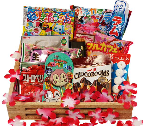 japan-crate-japanese-candy-subscription-4