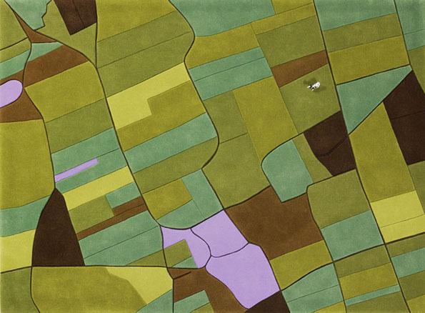 landcarpet-8