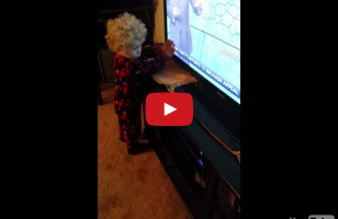This Little Boy Can't Stop Words From Scrolling On The TV