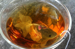 Fish Tea Bags Are Tea Bags That Look Just Like Goldfish