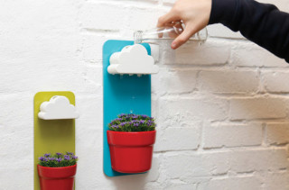 Have A Cloud Water Your Plants With The Rainy Pot