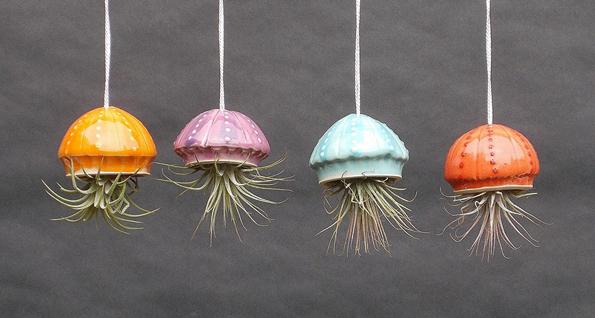 cephalopod-air-plant-holders-3