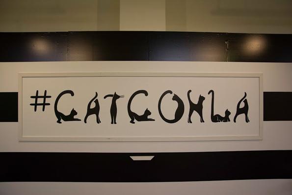 catconLA-8