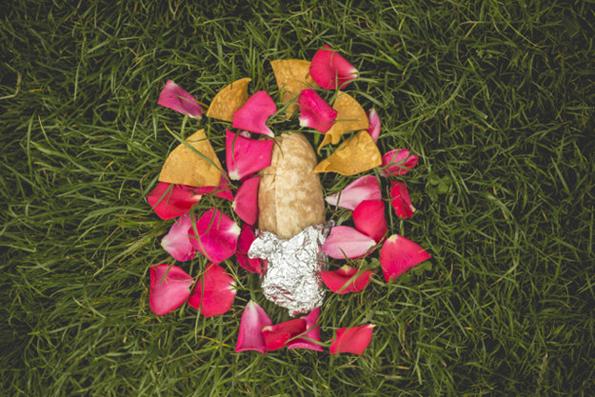 burrito-engagement-22