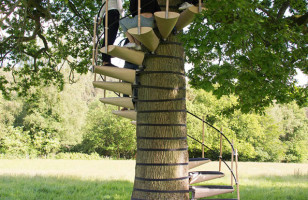 The CanopyStair Is A Spiral Staircase That Attaches To Trees