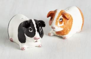 Guinea Pig Salt & Pepper Shakers Are Perfect For Quirky Kitchens