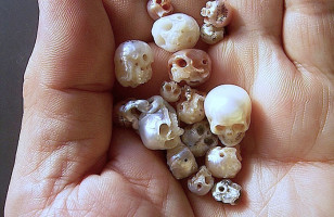 An Artist Carves These Tiny Skulls Out Of Pearls… Truly Incredible!