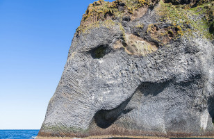 This Rock Formation Looks Like A Giant Elephant Head!