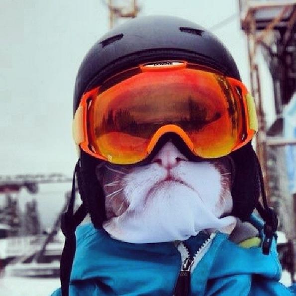 animal-ski-mask-3