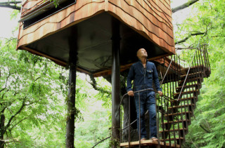 You Have Got To See These Amazing, Whimsical Treehouses!