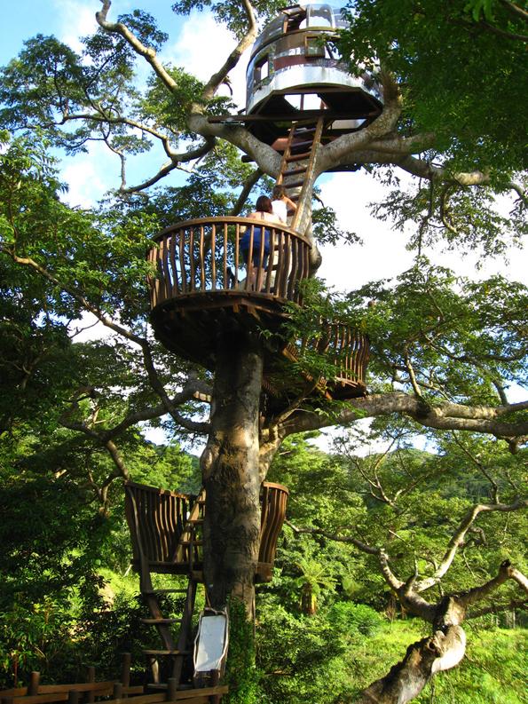 treehouses-by-takashi-kobayashi-8