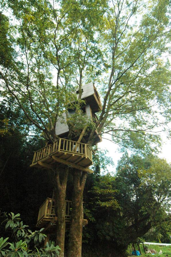 treehouses-by-takashi-kobayashi-9