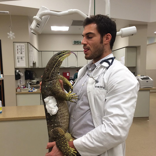hottest-veterinarian-9