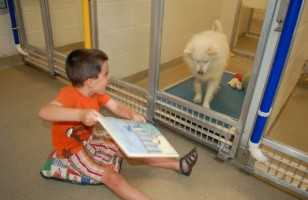 Kids Reading To Shelter Dogs Will Melt Your Cold Heart