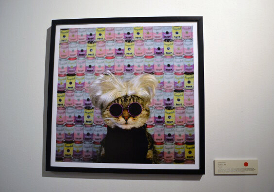 cat-art-show-6