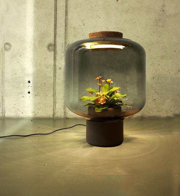 plant-lamps-3