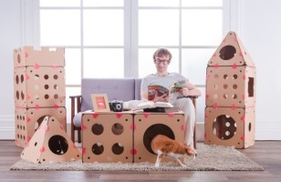 Connectable Cardboard Creates Customizable Cat Houses