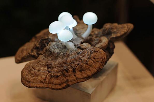 mushroom-lamps-2