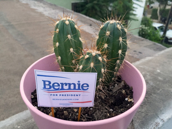 tiny-political-yard-signs-for-plants-3