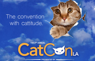 Kitty Lovers Rejoice! CatCon Is Coming Back For Round 2