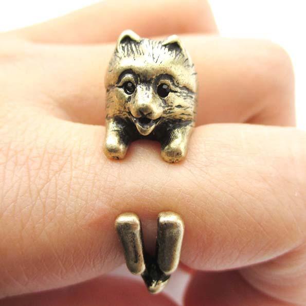 dog-ring-10