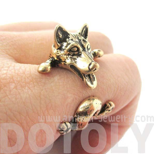 dog-ring-6