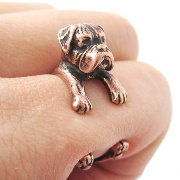 dog-ring-8
