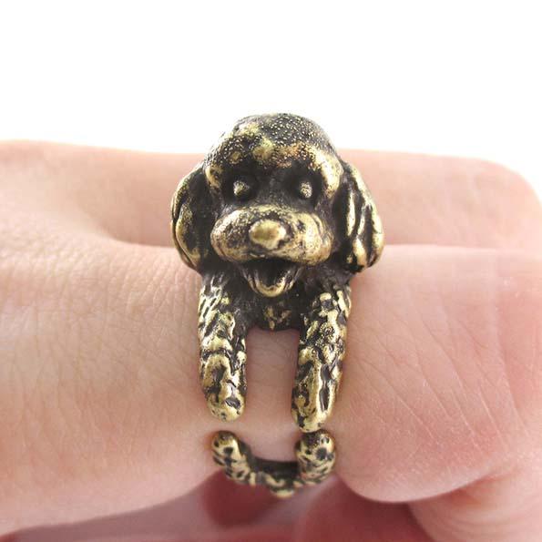 dog-ring-9