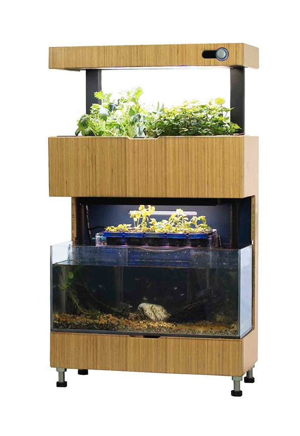 self-sustaining-garden-aquarium-1