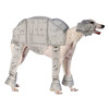 Star Wars Costumes For Your Pup