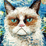 Grumpy Cat Starry Night Style