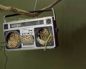 Boombox Turned Bird Feeder